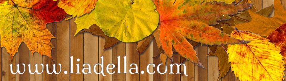 liadella-2014 header image