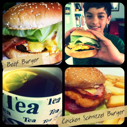 burger2013cam