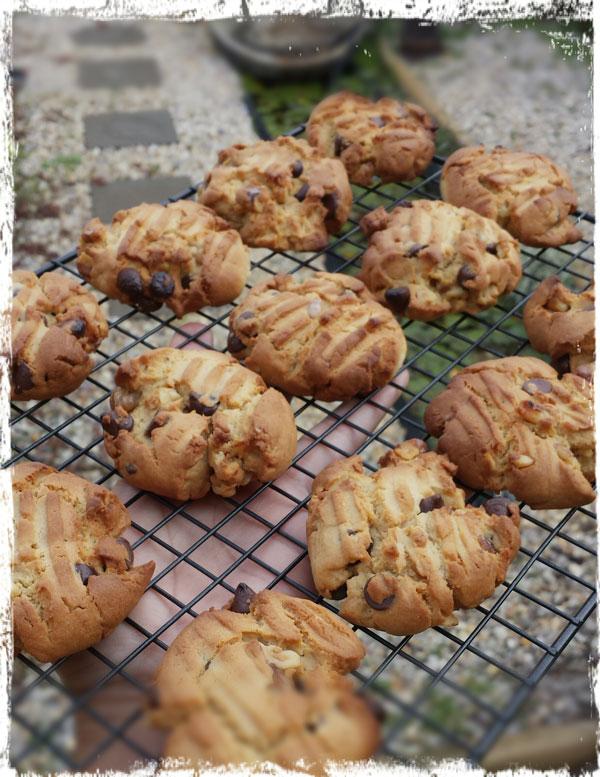 cookieslia2014